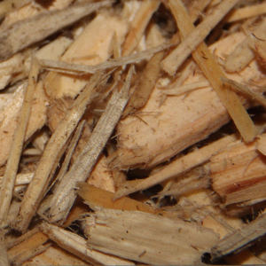 Alder Wood Chips Wholesale Wood Chips Suppliers Alibaba