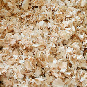 Bulk Wood Shavings Premium Quality / wood shavings for sale