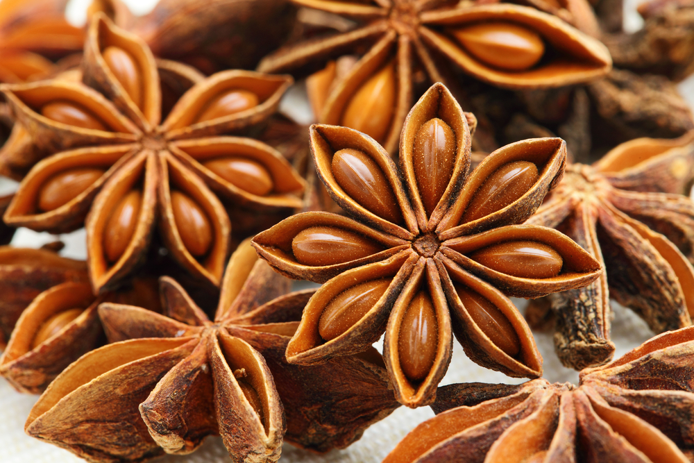 STAR ANISE SPICES FROM VIETNAM