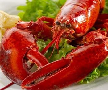 Segar Beku Kanada Lobster Pacific Kanada Merah Lobster Makanan