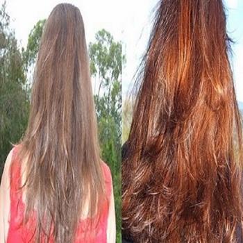 Silver Grey Hair Dye Chemical Free 7 Time Filter Organic Henna Hair