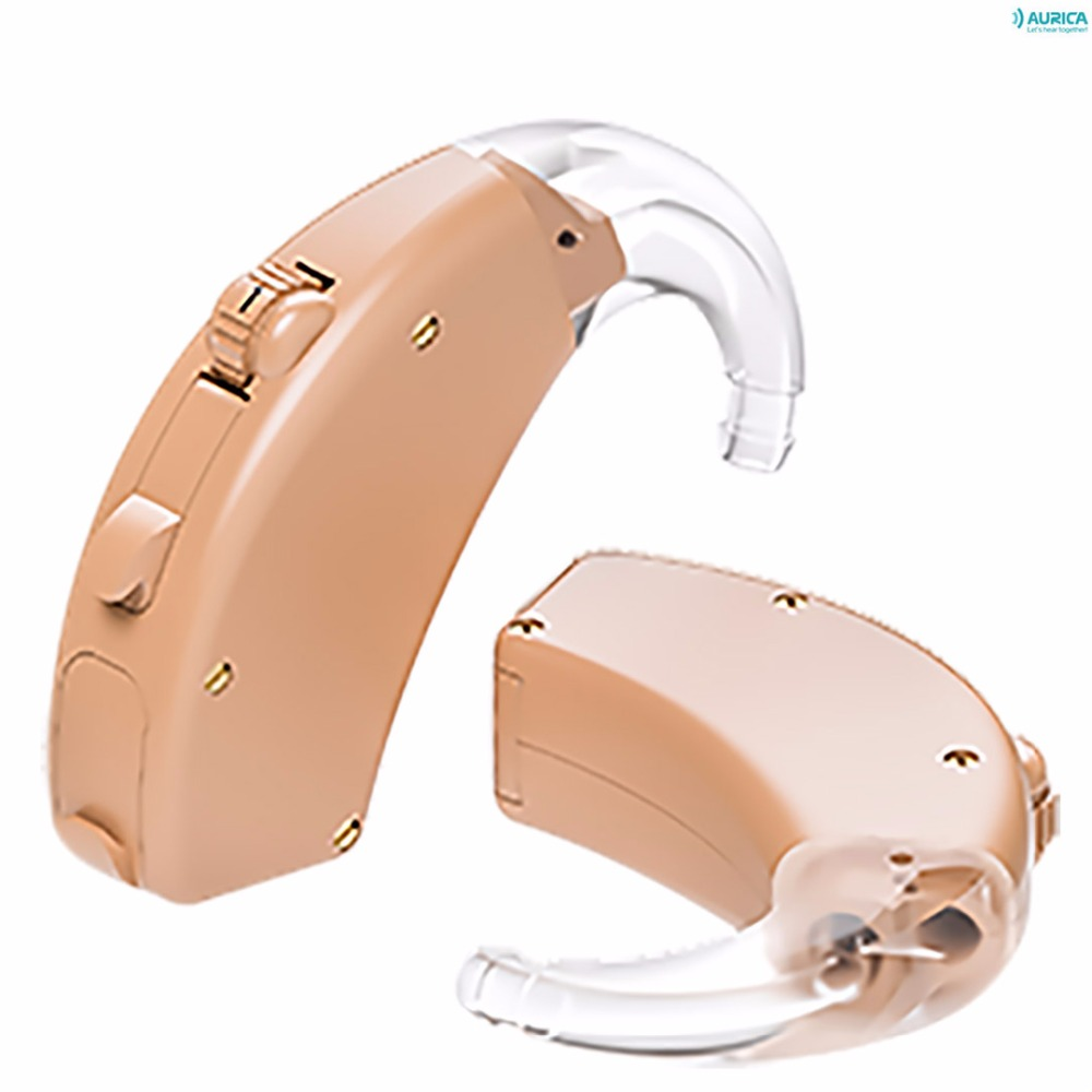 Aurica - Every 1660 DP - programmable digital hearing aids