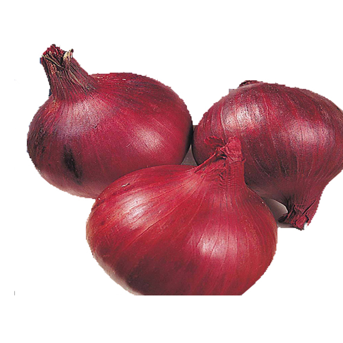 onion prices, onion prices Suppliers and Manufacturers at