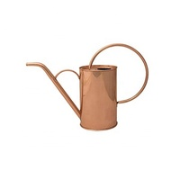 Watering Rose Gold Can For sale