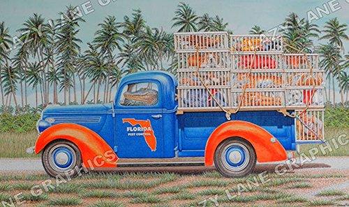 "Florida Gators ""Fresh Catch of the Day"" Art Print"