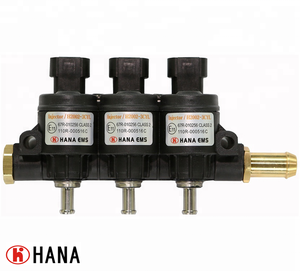 H2002 High-durability 3cyl & 4cyl CNG/LPG GAS fuel rail type injector (AMP 282104-1 connector)_HANA