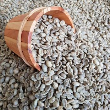 Whole Buyer Importer Arabica Coffee Bean Wholesale Price