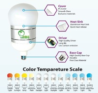 Industrial Led Bulb