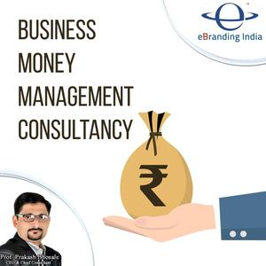 Business Money Management Consulting Service