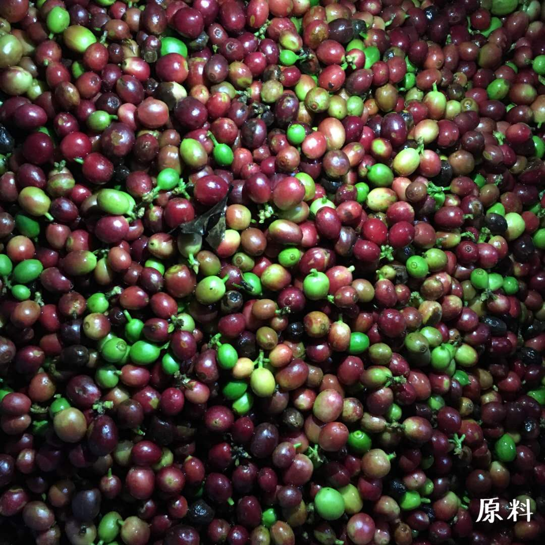 2018 The Latest Belt-type Coffee Cherry Color Sorting
