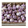 /product-detail/purple-garlic-dalat-fresh-garlic-50045999970.html