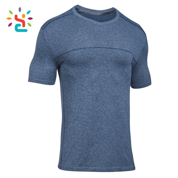 Mens Fitness Clothing T Shirt Seamless Sports Tee Shirts Blank