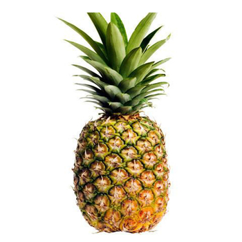 Fresh Pineapple / Indian Fresh Pineapple / Wholesale Price Fresh Pineapple  - Buy Fruit And Vegetable Price List,Fresh Fruits And Vegetables,Wholesale