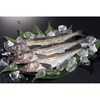600-800g Cold Storage Seafood Fish Frozen Alaska Pollock With Good Price