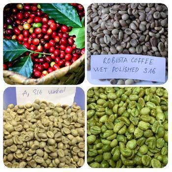 prezzo del caffè verde per tonnellata