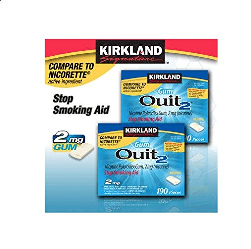 Kirkland Signature Quit Smoking Gum, 2 mg, 380 Count