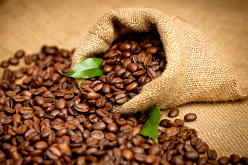Manufacturing Supplying And Exporting Quality Coffee Bean