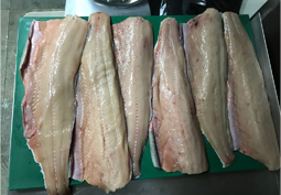 Frozen Pale Chum Salmon Fillet