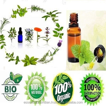 best processor of natural Vervain oil from india