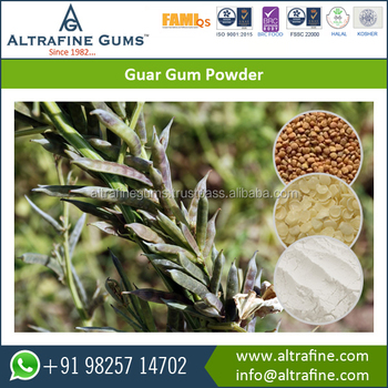 Natural and Pure Guar Gum Powder Best Food Additive