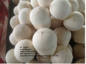 Fresh Coconut Importers in uae market (Skype:Vivian48392)
