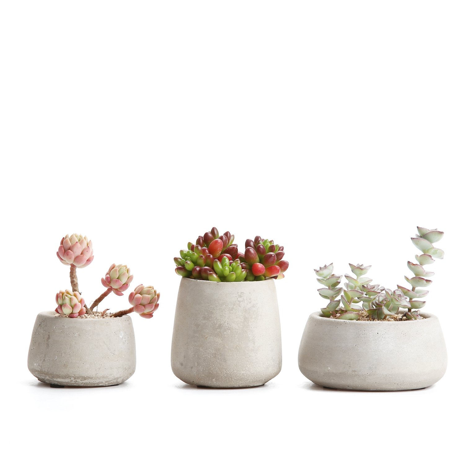 T4U 2.5-3.5 Inch Cement Serial Sets Sucuulent Cactus Plant Pots Flower Pots Planters Containers Window Boxes Grey - Pack of 3