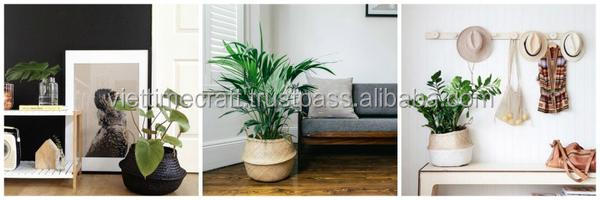 belly seagrass baskets are plant holders