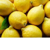 EGYPTIAN FRESH LEMON/ LIME - SEED AND SEEDLESS - IN SEASON FOR SALE