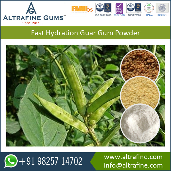 Excellent Thickening, Emulsion, Water Soluble Fast Hydrating Guar Gum Powder