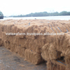 Coconut Fiber with high quality and best price from Viet Nam for export 2019