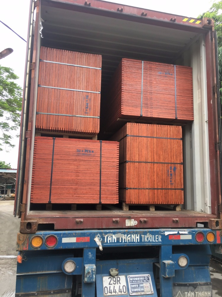 28mm Sealed Edges Keruing 100% Eucalyptus Core Container Shipping Flooring Plywood