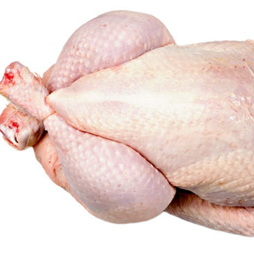 Whole frozen chicken calibrated, HALAL packed in the carton frozen chicken supplier
