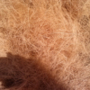 COCONUT FIBER - GOOD PRICE - READY FOR EXPORTING - VIET SEAFARM