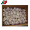 /product-detail/import-chinese-garlic-directly-from-fresh-natural-garlic-factory-62006019875.html