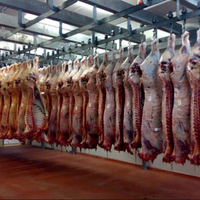 Halal Fresh Lamb /Frozen Meat of Beef/Cow Meat of All Parts