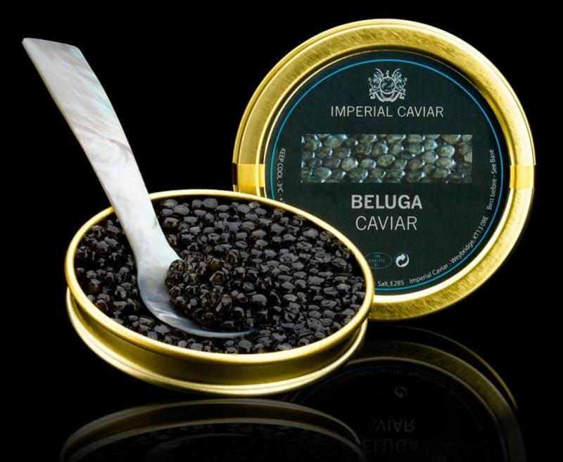 https://sc02.alicdn.com/kf/UTB8a9HMXdnJXKJkSaiyq6AhwXXaJ/Italian-Beluga-Caviar.jpg