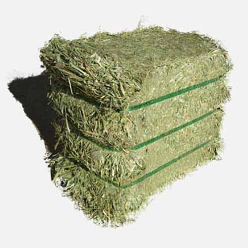 Buy Best Quality Alfalfa Hay,Timothy Hay and Bermuda Hay Now in Stock.