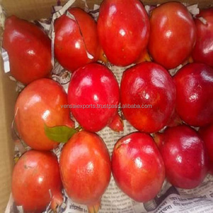 First quality pomegranates From India