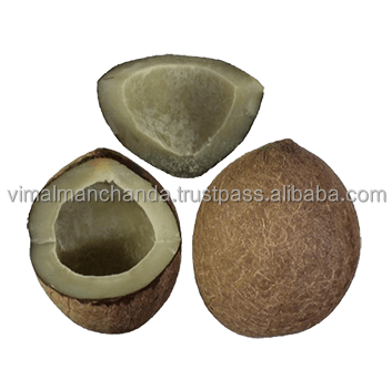 Premium grade dried Coconut
