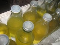 100% Virgin Olive oil supplier
