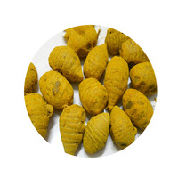 Importers of Turmeric in India