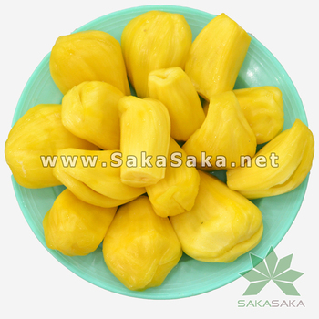 Frozen Jackfruit or Jack Fruit Vietnam