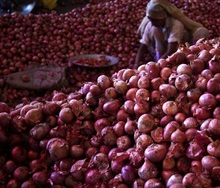 market price for red fresh onion for ton