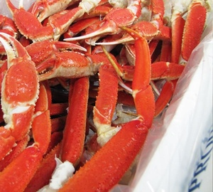 Best Quality Bairdi Snow Crab