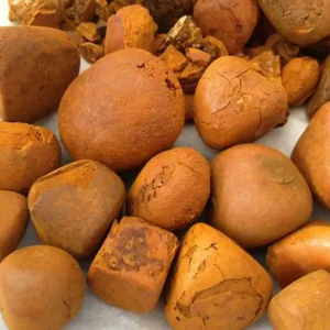 Hot sales price Yellowish Cow Ox Gallstone
