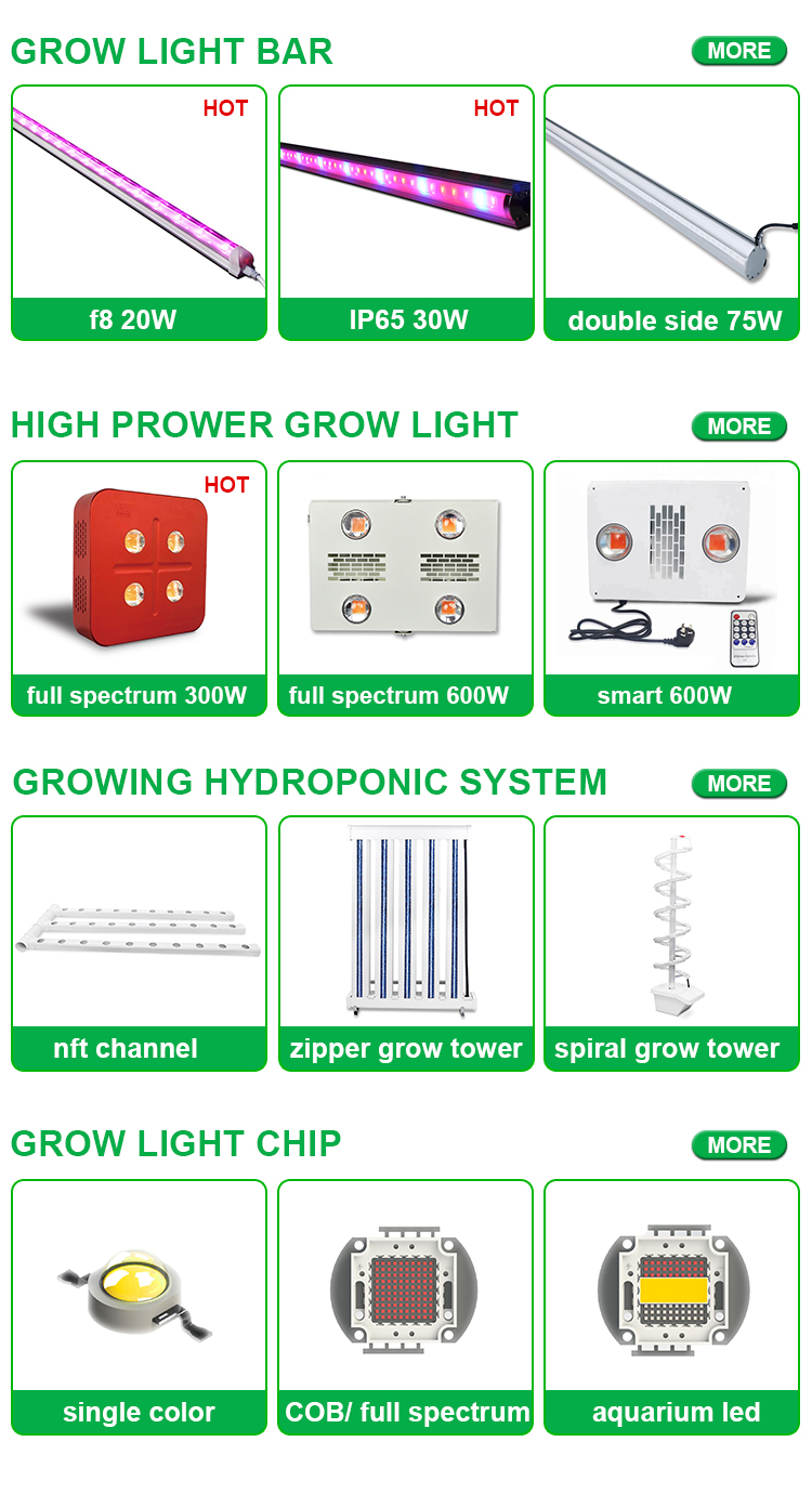 Wholesale Light Mover Automatic Indoor Home Decorative Plug And Play Vertical Hydroponics Growing Systems With Water Tank Pump