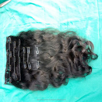 PANCHA CLIP IN INDIAN HAIR EXTENSIONS