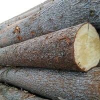 Low price construction wood Pine, Spruce and Red Meranti Sawn Timber logs