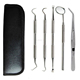 Dental Hygiene Kit Dental Tools With Tarter Scraper Dental Mirror Tweezers Dental Toothpick Scaling
