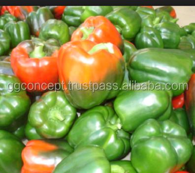866f9fcdc678 Green Bell Pepper